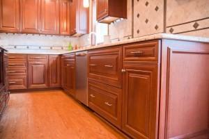 CoreTec Plus flooring ~ Design Build Pros (1)