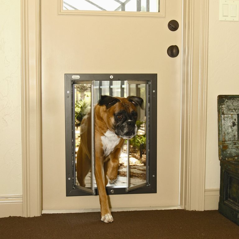 Pet Doors For Your Home Design Build Planners