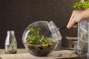 incorporationg a garden in your home ~ Organic Gurlz Gardens (3)