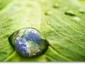 energy_clearing_leaf_world