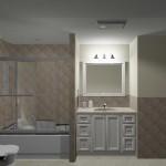 Hall Bathroom Remodeling Design Plan 2