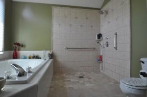 level entry shower system