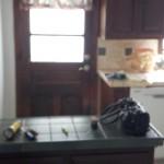 Existing Kitchen Area (1)