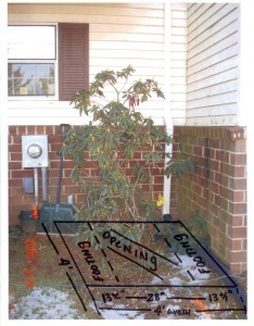 planning a basement egress window (2)