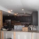 In Progress Remodel 2-5-15 (3)-Design Build Planners