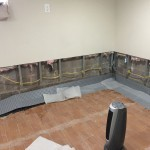 All County Waterproofing Project Review (7)-a Design Build Planners Preferred Remodeler