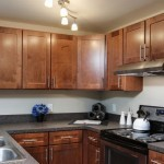 Kitchen Remodel from Dasan Building Group (2)-a Design Build Planners Preferred Remodeler