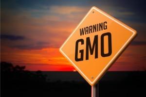 Beware of GMOs ~ Organic Gurlz Gardens Fort Wayne Indiana