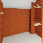 Walk in Closet (2)