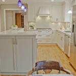 Kitchen PLUS in Warren NJ (13)-Design Build Planners