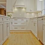 Kitchen PLUS in Warren NJ (16)-Design Build Planners