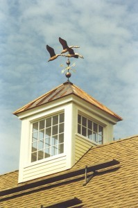 Roof Cupola - Design Build Planners (1)
