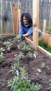 Becca working in the Organic Gurlz Gardens in Fort Wayne Indiana