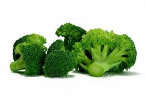 Chlorophyll in broccoli from Organic Gurlz Gardens in Fort Wayne Indiana