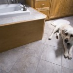 new master bathroom addition (2)