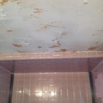 BEFORE remodeling (2)