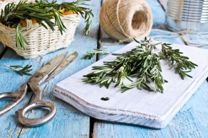 Health Benefits of Rosemary - Organic Gurlz Gardens Fort Wayne Indiana