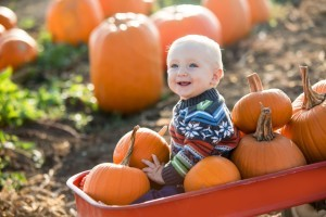 Health benefits of pumpkins - Organic Gurlz Gardens Fort Wayne Indiana