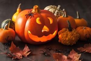 Health benefits of pumpkins - Organic Gurlz Gardens Fort Wayne Indiana