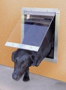 Dog door ~ Design Build Planners (3)