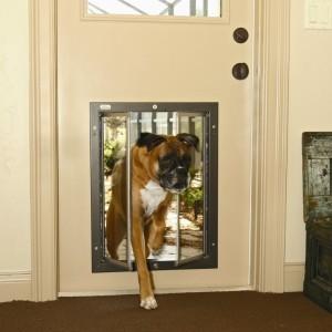 Dog door ~ Design Build Planners (4)