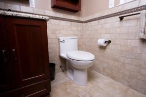 Thomas Crapper Day Toilet (1)