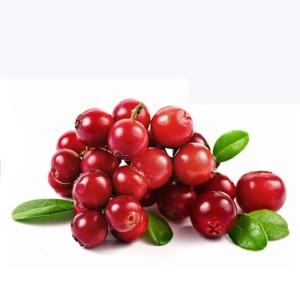 cranberry smoothie - Organic Gurlz Gardens