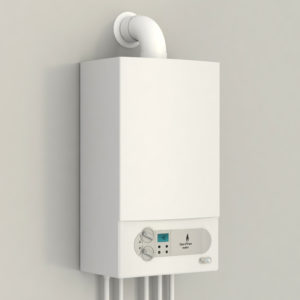 Tankless Water Heater by the Design Build Planners